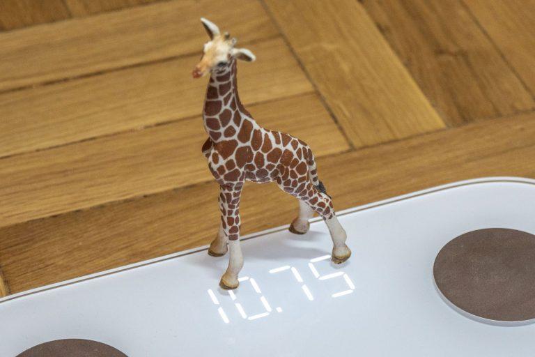 Xiaomi Mi Body Composition Scale 2 okosmérleg teszt 10
