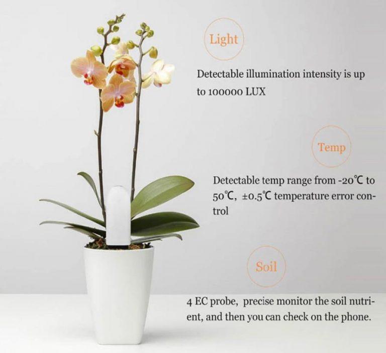 Okosan nevelhetjük a virágainkat a VegTrug növénymonitorral 8